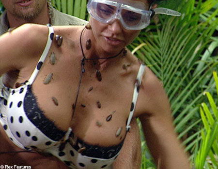 Katie Price is at the centre of an I'm A Celebrity fight